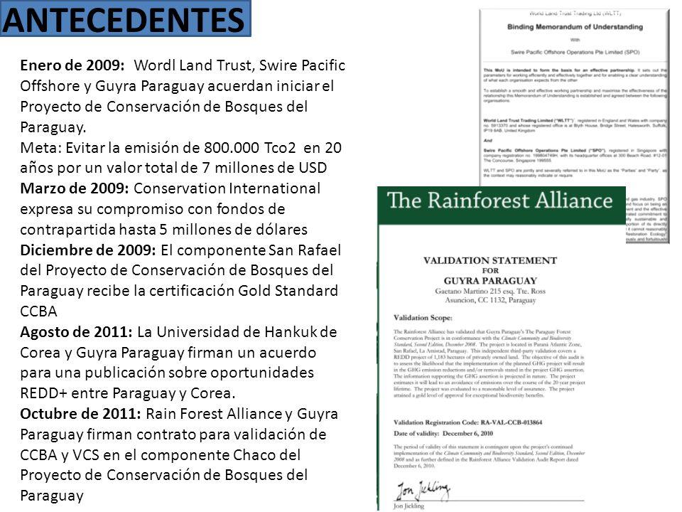 ANTECEDENTES Enero de 2009: Wordl Land Trust, Swire Pacific Offshore y Guyra Paraguay acuerdan iniciar el Proyecto de Conservación de Bosques del Para