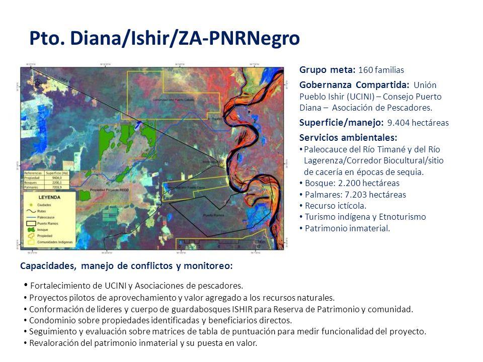 Pto. Diana/Ishir/ZA-PNRNegro Grupo meta: 160 familias Superficie/manejo: 9.404 hectáreas Servicios ambientales: Paleocauce del Río Timané y del Río La