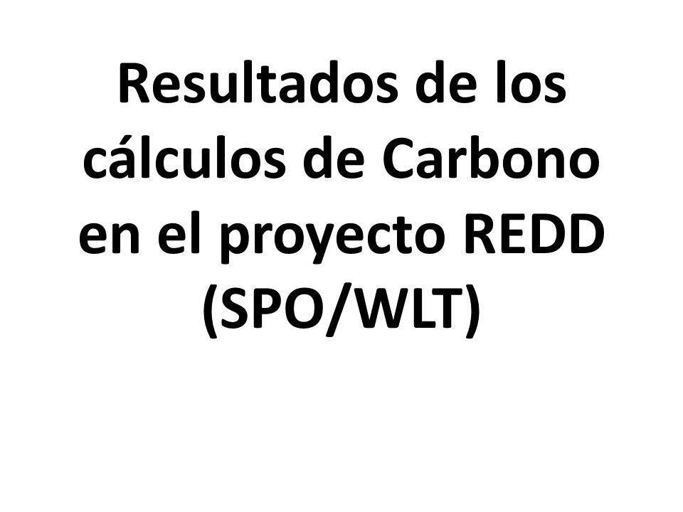 Resultados de los cálculos de Carbono en el proyecto REDD (SPO/WLT)