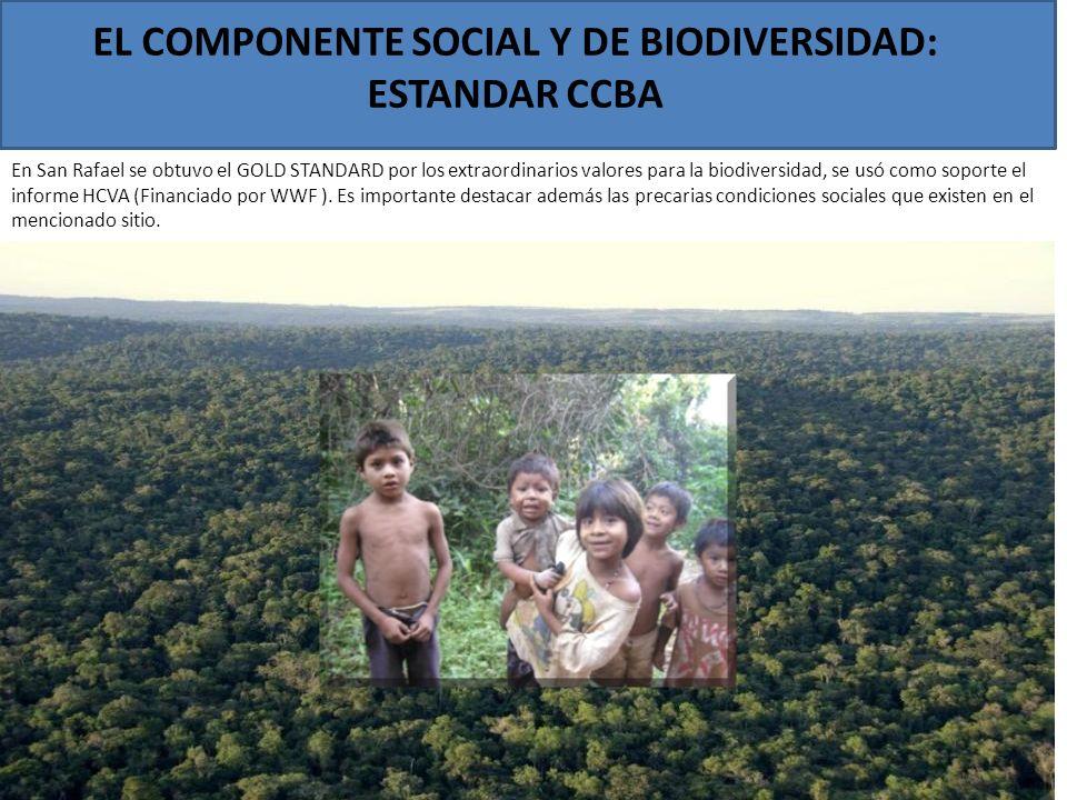 EL COMPONENTE SOCIAL Y DE BIODIVERSIDAD: ESTANDAR CCBA En San Rafael se obtuvo el GOLD STANDARD por los extraordinarios valores para la biodiversidad,
