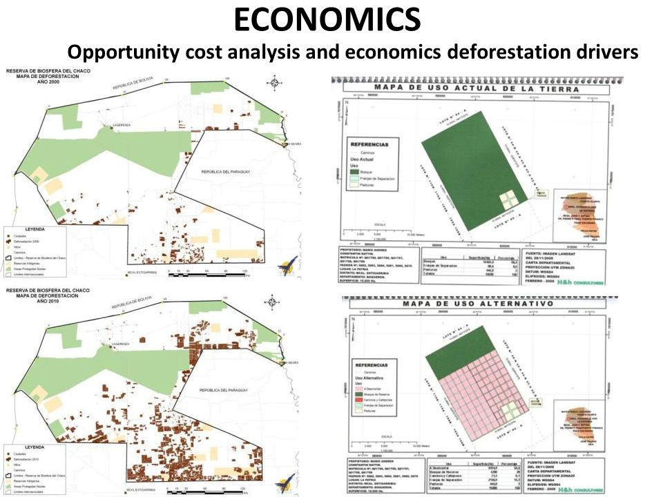 SOCIAL ISSUES AGRARIAN REFORM ORIENTED TO DEFORESTATION SMALL FARMERS SETLEMENT IMPLEMENTED BY THE GOVERMENTS