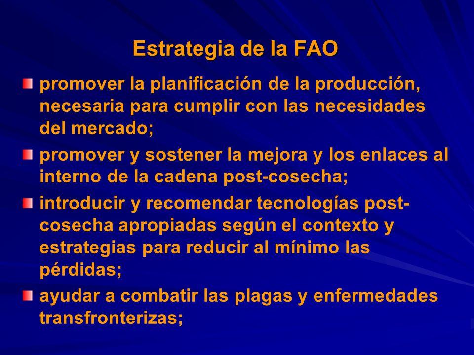 Estrategia de la FAO promover la planificación de la producción, necesaria para cumplir con las necesidades del mercado; promover y sostener la mejora