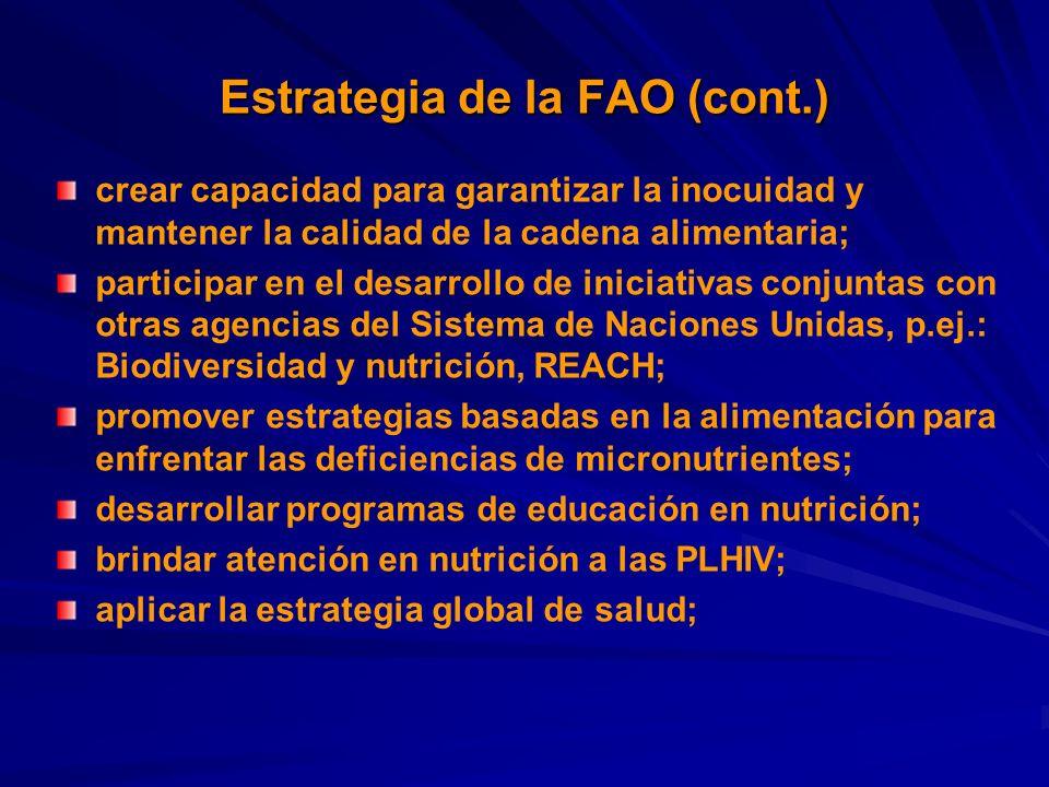Estrategia de la FAO (cont.) crear capacidad para garantizar la inocuidad y mantener la calidad de la cadena alimentaria; participar en el desarrollo de iniciativas conjuntas con otras agencias del Sistema de Naciones Unidas, p.ej.: Biodiversidad y nutrición, REACH; promover estrategias basadas en la alimentación para enfrentar las deficiencias de micronutrientes; desarrollar programas de educación en nutrición; brindar atención en nutrición a las PLHIV; aplicar la estrategia global de salud;