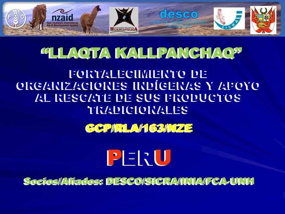 LLAQTA KALLPANCHAQ FORTALECIMIENTO DE ORGANIZACIONES INDÍGENAS Y APOYO AL RESCATE DE SUS PRODUCTOS TRADICIONALES GCP/RLA/163/NZE PERU Socios/Aliados: DESCO/SICRA/INIA/FCA-UNH LLAQTA KALLPANCHAQ FORTALECIMIENTO DE ORGANIZACIONES INDÍGENAS Y APOYO AL RESCATE DE SUS PRODUCTOS TRADICIONALES GCP/RLA/163/NZE PERU Socios/Aliados: DESCO/SICRA/INIA/FCA-UNH Centro de Estudios y Promoción del Desarrollo