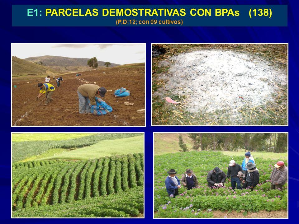 E1: PARCELAS DEMOSTRATIVAS CON BPAs (138) (P.D:12; con 09 cultivos)