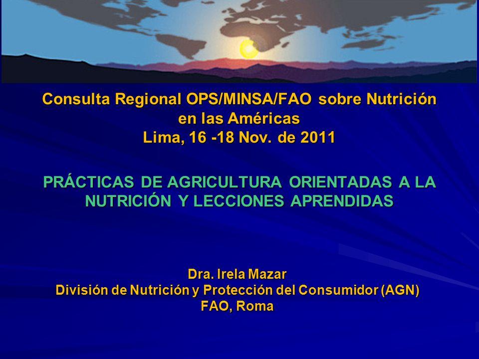 Consulta Regional OPS/MINSA/FAO sobre Nutrición en las Américas Lima, 16 -18 Nov. de 2011 PRÁCTICAS DE AGRICULTURA ORIENTADAS A LA NUTRICIÓN Y LECCION