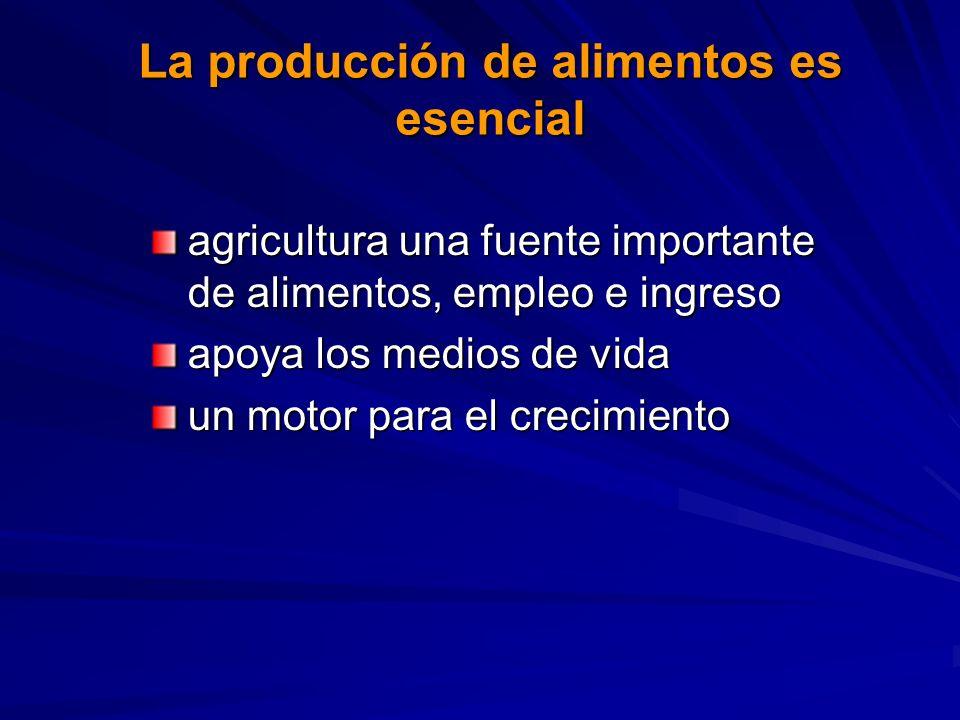 La producción de alimentos es esencial agricultura una fuente importante de alimentos, empleo e ingreso apoya los medios de vida un motor para el crecimiento