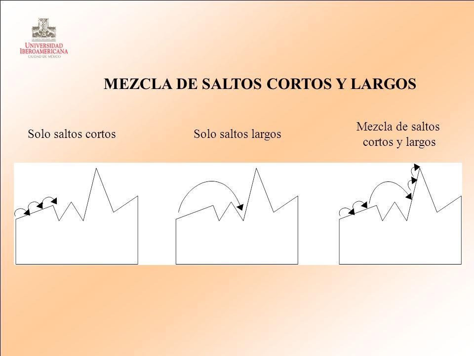 Solo saltos cortosSolo saltos largos Mezcla de saltos cortos y largos MEZCLA DE SALTOS CORTOS Y LARGOS