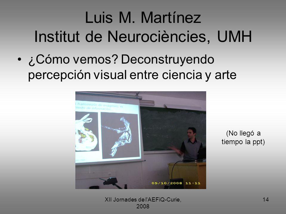 XII Jornades de l'AEFiQ-Curie, 2008 14 Luis M. Martínez Institut de Neurociències, UMH ¿Cómo vemos? Deconstruyendo percepción visual entre ciencia y a