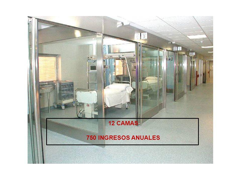12 CAMAS 750 INGRESOS ANUALES