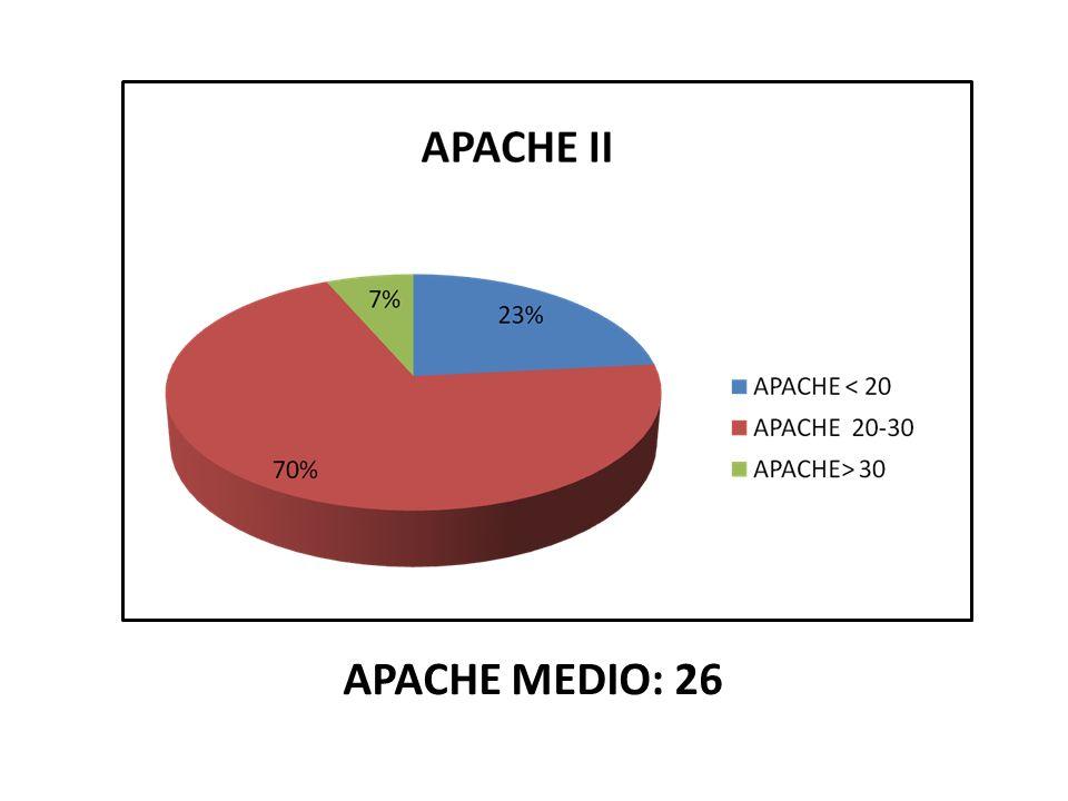 APACHE MEDIO: 26