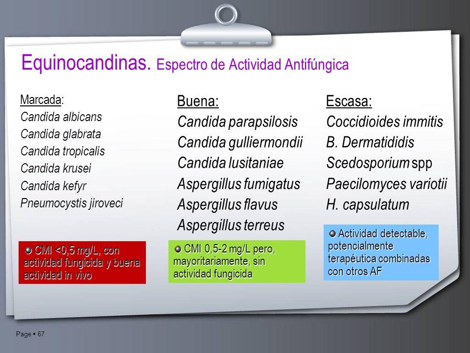 Page 67 Marcada: Candida albicans Candida glabrata Candida tropicalis Candida krusei Candida kefyr Pneumocystis jiroveci Buena: Candida parapsilosis C
