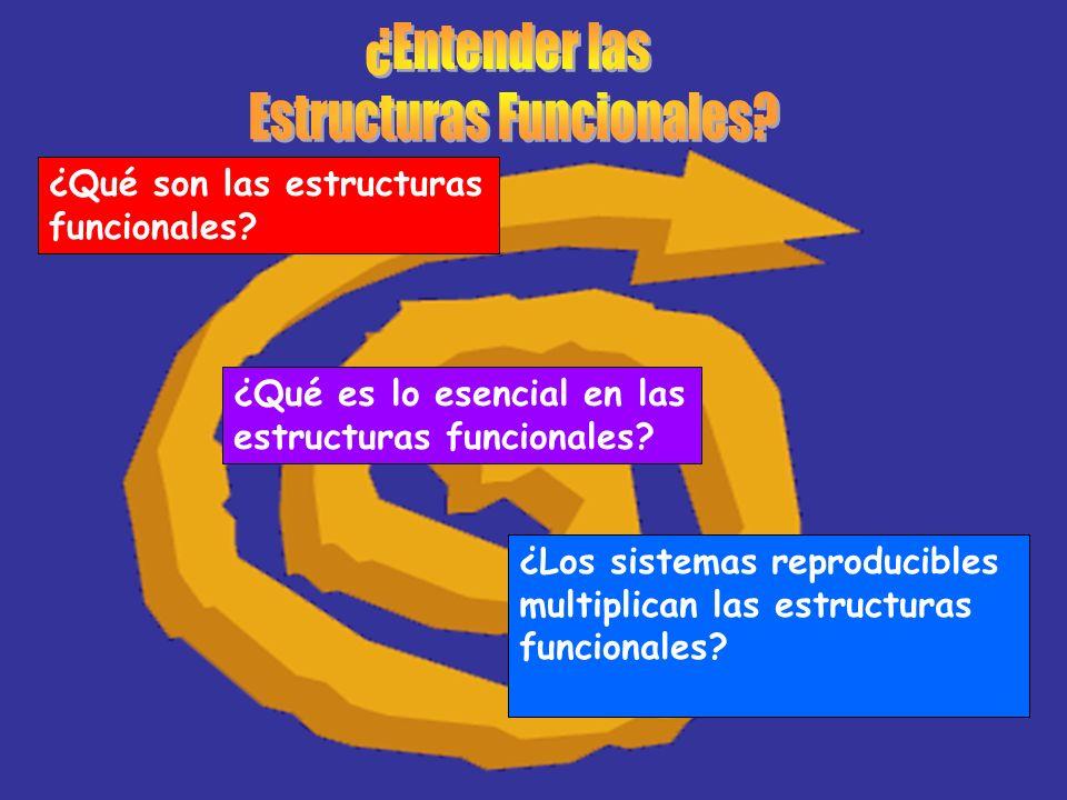 ¿Qué son las estructuras funcionales? ¿Qué es lo esencial en las estructuras funcionales? ¿Los sistemas reproducibles multiplican las estructuras func