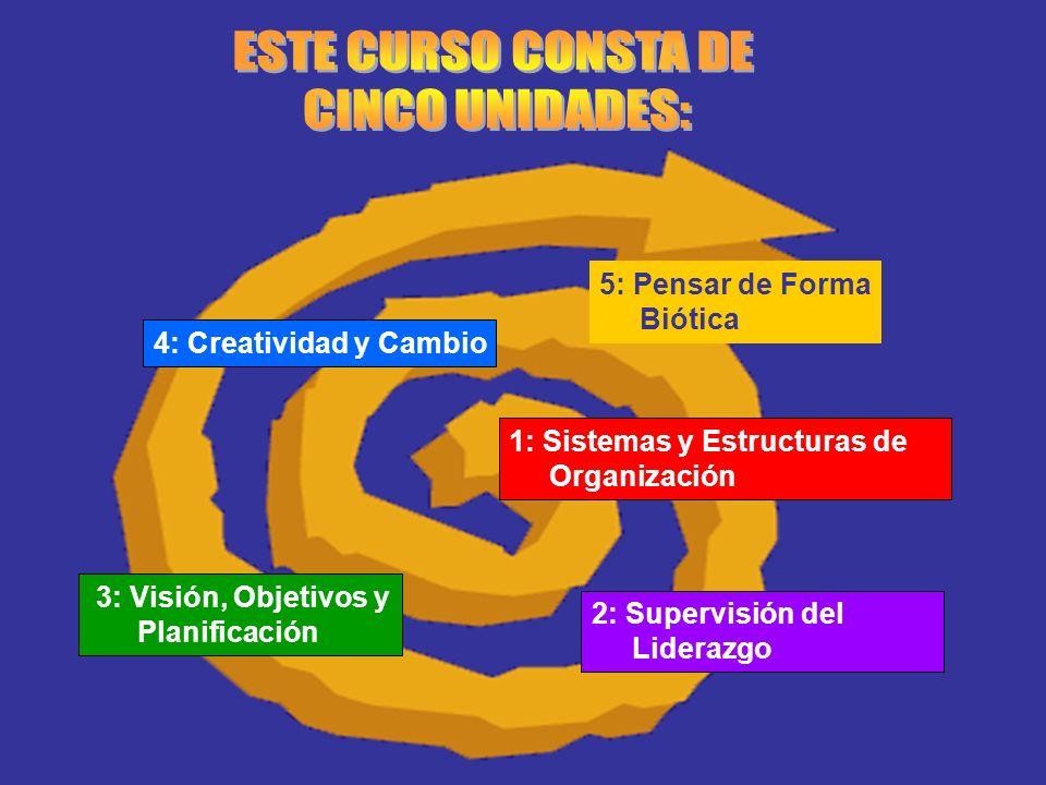 1: Sistemas y Estructuras de Organización 2: Supervisión del Liderazgo 3: Visión, Objetivos y Planificación 4: Creatividad y Cambio 5: Pensar de Forma