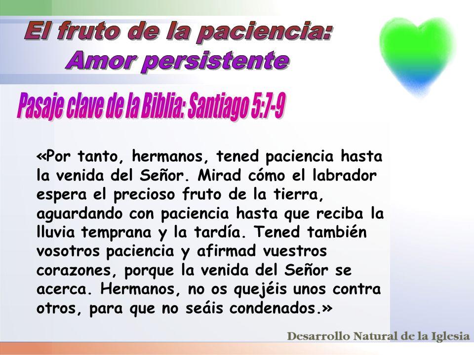 «Por tanto, hermanos, tened paciencia hasta la venida del Señor. Mirad cómo el labrador espera el precioso fruto de la tierra, aguardando con pacienci