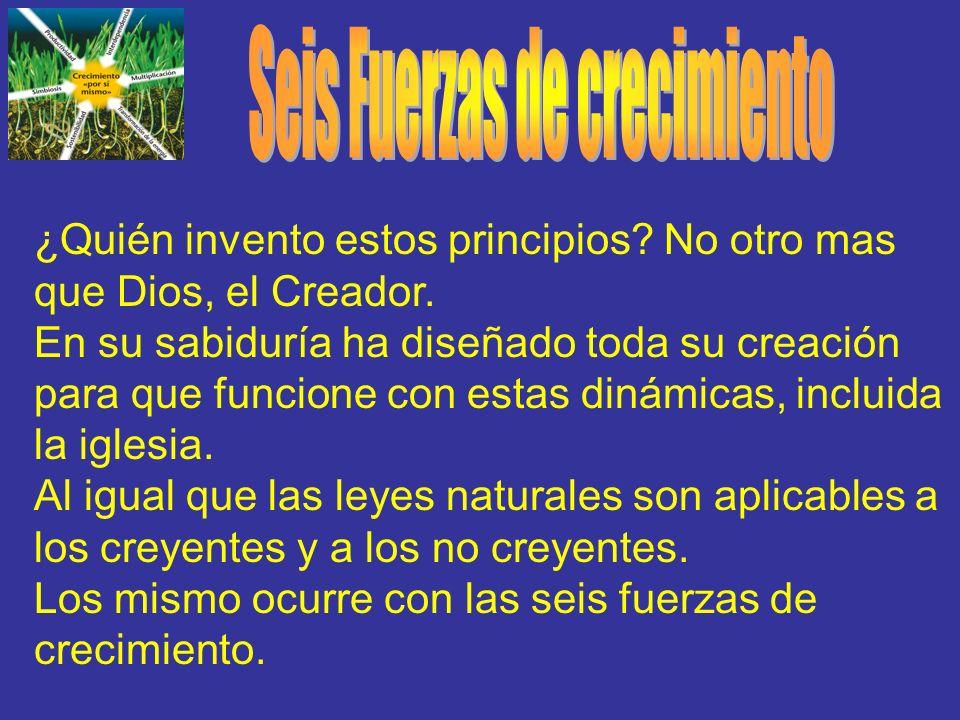 ¿Quién invento estos principios? No otro mas que Dios, el Creador. En su sabiduría ha diseñado toda su creación para que funcione con estas dinámicas,
