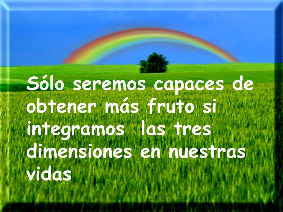 Sólo seremos capaces de obtener más fruto si integramos las tres dimensiones en nuestras vidas
