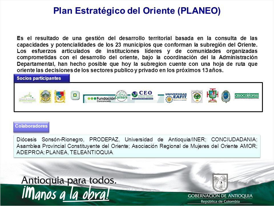 Diócesis Sonsón-Rionegro, PRODEPAZ, Universidad de Antioquia/INER; CONCIUDADANIA; Asamblea Provincial Constituyente del Oriente; Asociación Regional d