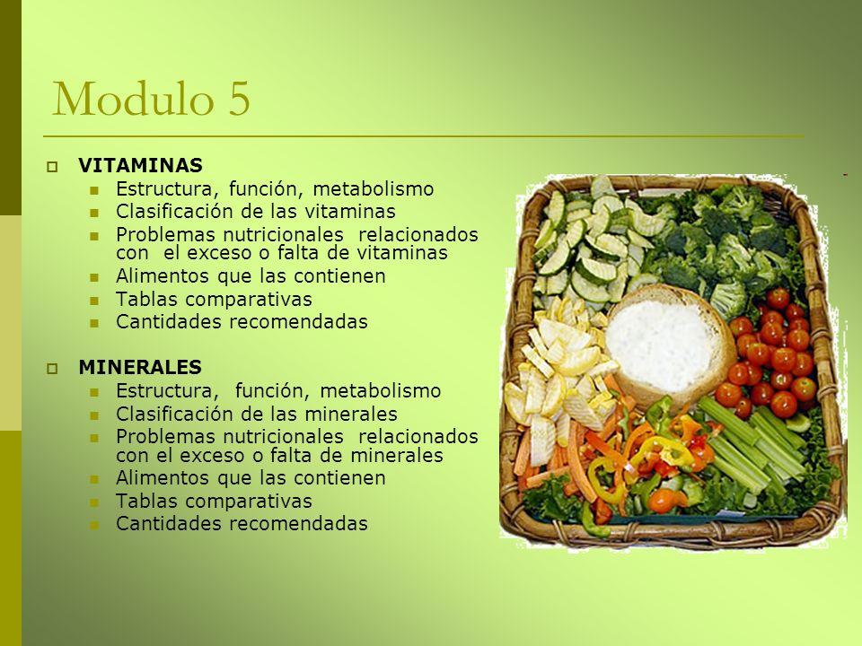 Modulo 5 VITAMINAS Estructura, función, metabolismo Clasificación de las vitaminas Problemas nutricionales relacionados con el exceso o falta de vitam