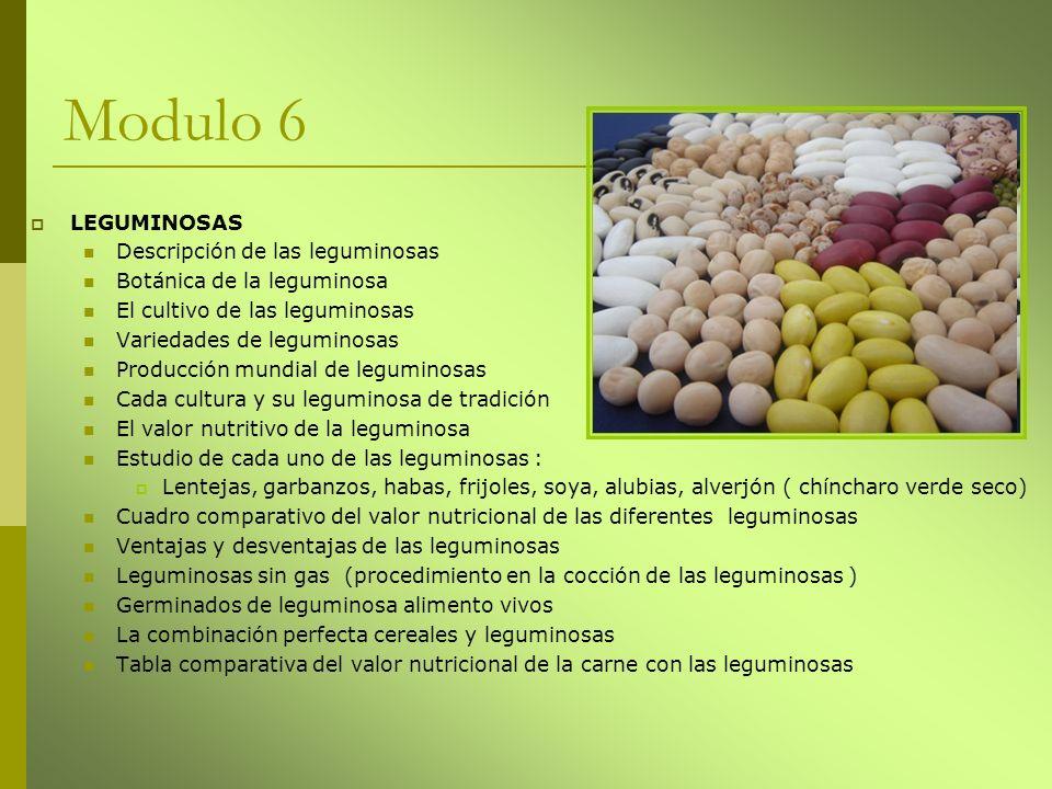 Modulo 6 LEGUMINOSAS Descripción de las leguminosas Botánica de la leguminosa El cultivo de las leguminosas Variedades de leguminosas Producción mundi
