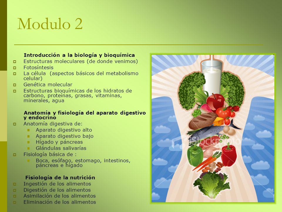 Modulo 2 Introducción a la biología y bioquímica Estructuras moleculares (de donde venimos) Fotosíntesis La célula (aspectos básicos del metabolismo c