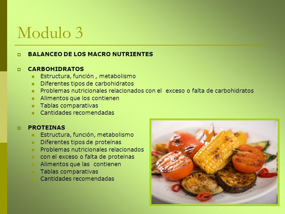 Modulo 4 GRASAS Estructura, función metabolismo Diferentes tipos de grasas Problemas nutricionales relacionados con el exceso o falta de grasas Alimentos que las contienen Tablas comparativas Cantidades recomendadas BALANCEO DE MICRO NUTRIENTES Agua Enzimas Fotoquímicos