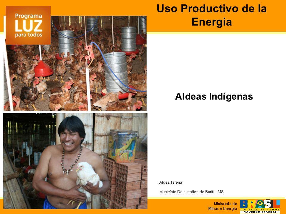 Aldeas Indígenas Aldea Terena Município Dois Irmãos do Buriti - MS Uso Productivo de la Energia