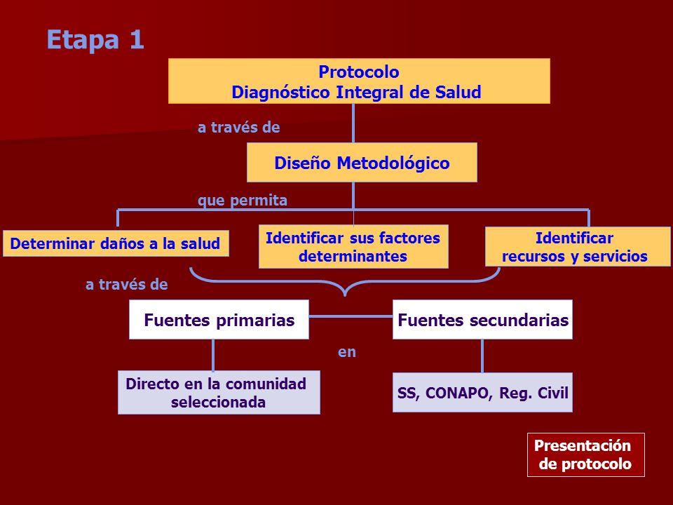 Etapa 1 Protocolo Diagnóstico Integral de Salud Diseño Metodológico Determinar daños a la salud Identificar sus factores determinantes Identificar rec
