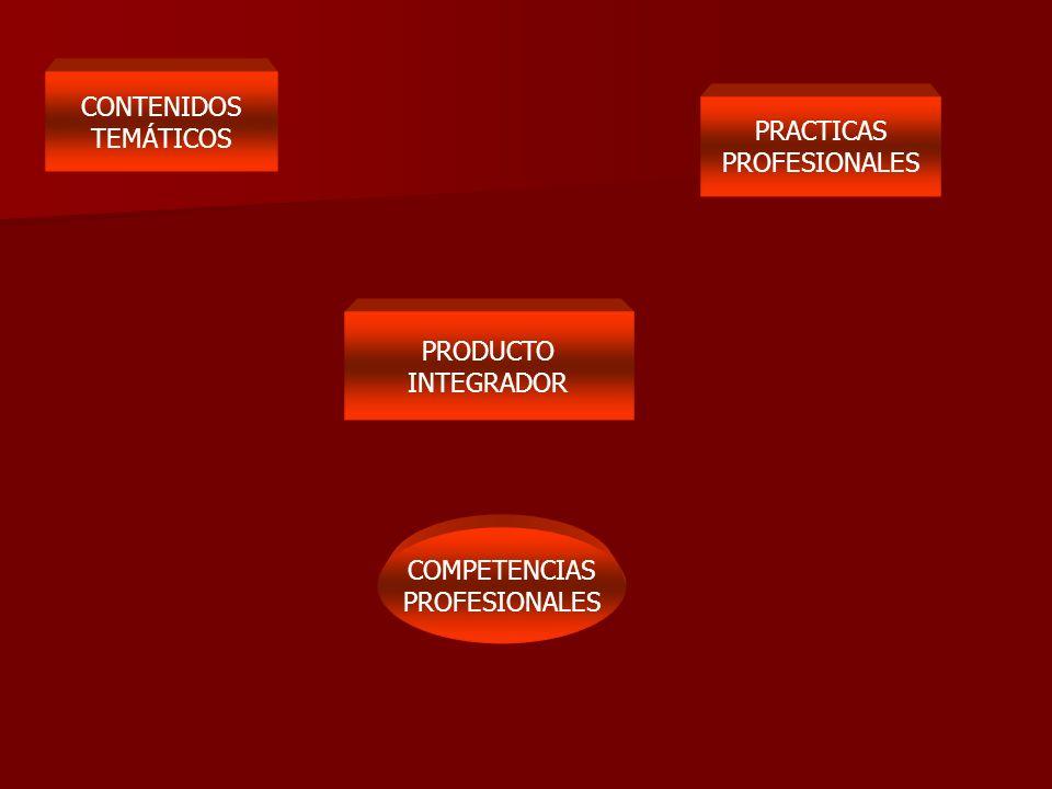 COMPETENCIAS PROFESIONALES CONTENIDOS TEMÁTICOS PRACTICAS PROFESIONALES PRODUCTO INTEGRADOR