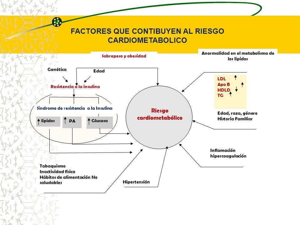Riesgo cardiometabólico Anormalidad en el metabolismo de los lípidos Sobrepeso y obesidad LDL Apo B HDLD TG Edad, raza, género Historia Familiar Infla