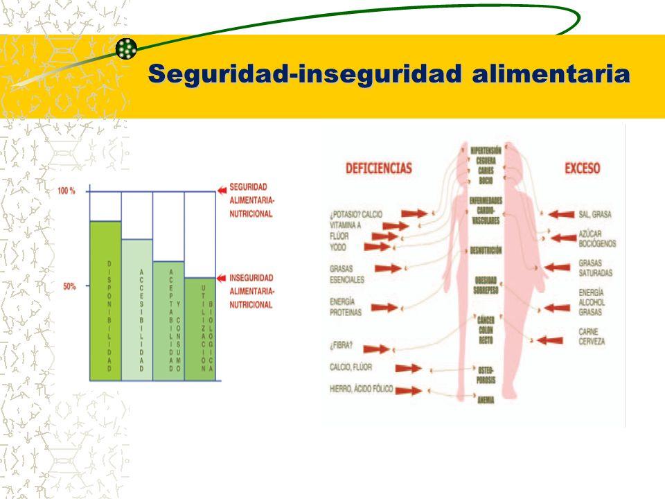 Productos del proyecto Resultados para la obtención de grado de maestría Datos para la elaboración de artículos científicos Modelo territorial de intervención Documento en extenso del programa base del Instituto de Nutrición y educación para la salud en CHIAPAS (IM EPREV)