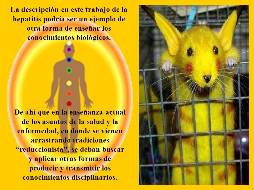 La descripción en este trabajo de la hepatitis podría ser un ejemplo de otra forma de enseñar los conocimientos biológicos.