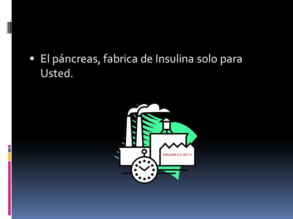 El páncreas, fabrica de Insulina solo para Usted. INSULINA S.A. DE C.V.