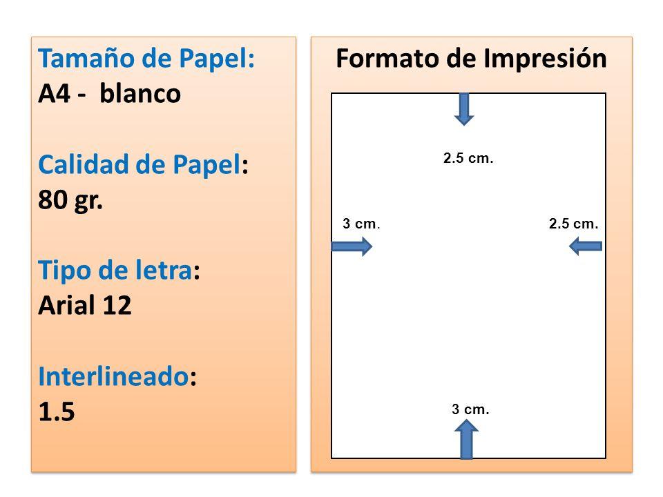 Tamaño de Papel: A4 - blanco Calidad de Papel: 80 gr.