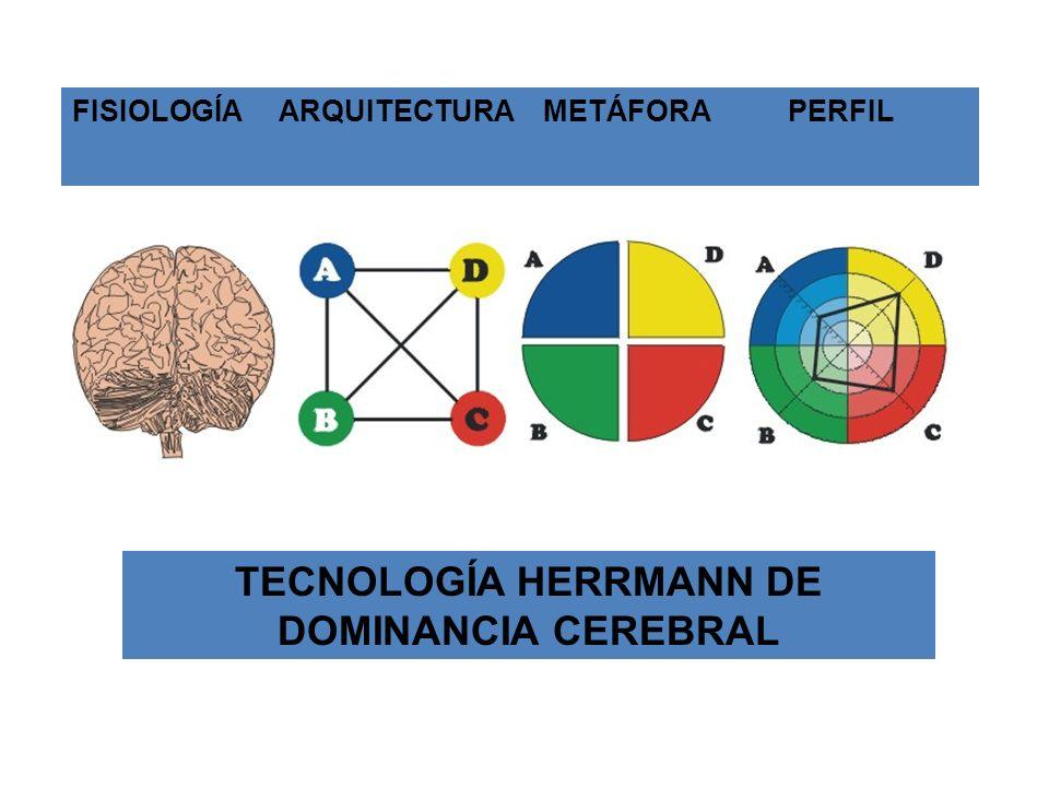 FISIOLOGÍA ARQUITECTURA METÁFORA PERFIL TECNOLOGÍA HERRMANN DE DOMINANCIA CEREBRAL