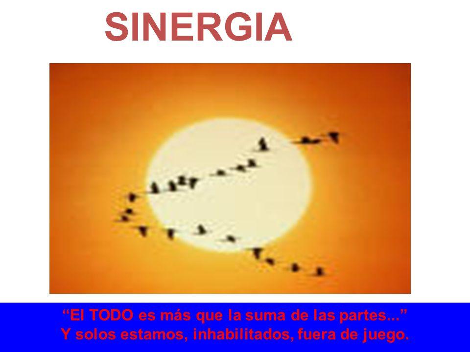 SINERGIA El TODO es más que la suma de las partes... Y solos estamos, inhabilitados, fuera de juego.