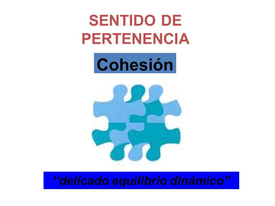 delicado equilibrio dinámico SENTIDO DE PERTENENCIA Cohesión