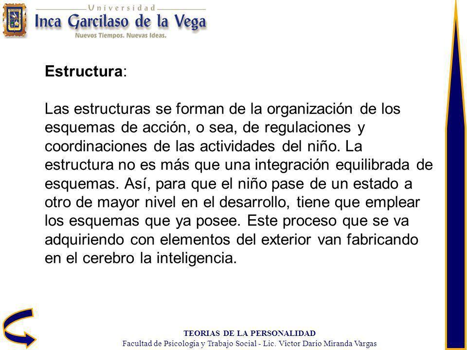 TEORIAS DE LA PERSONALIDAD Facultad de Psicología y Trabajo Social - Lic. Víctor Darío Miranda Vargas Estructura: Las estructuras se forman de la orga