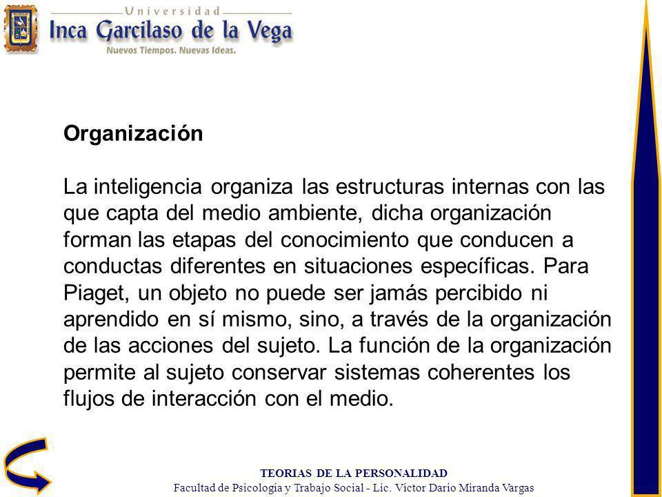 TEORIAS DE LA PERSONALIDAD Facultad de Psicología y Trabajo Social - Lic. Víctor Darío Miranda Vargas Organización La inteligencia organiza las estruc