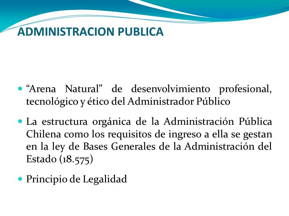 ADMINISTRACION PUBLICA Arena Natural de desenvolvimiento profesional, tecnológico y ético del Administrador Público La estructura orgánica de la Admin