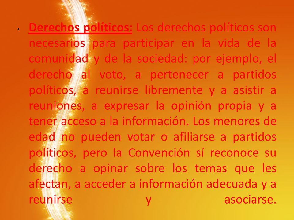 Derechos políticos: Los derechos políticos son necesarios para participar en la vida de la comunidad y de la sociedad: por ejemplo, el derecho al voto