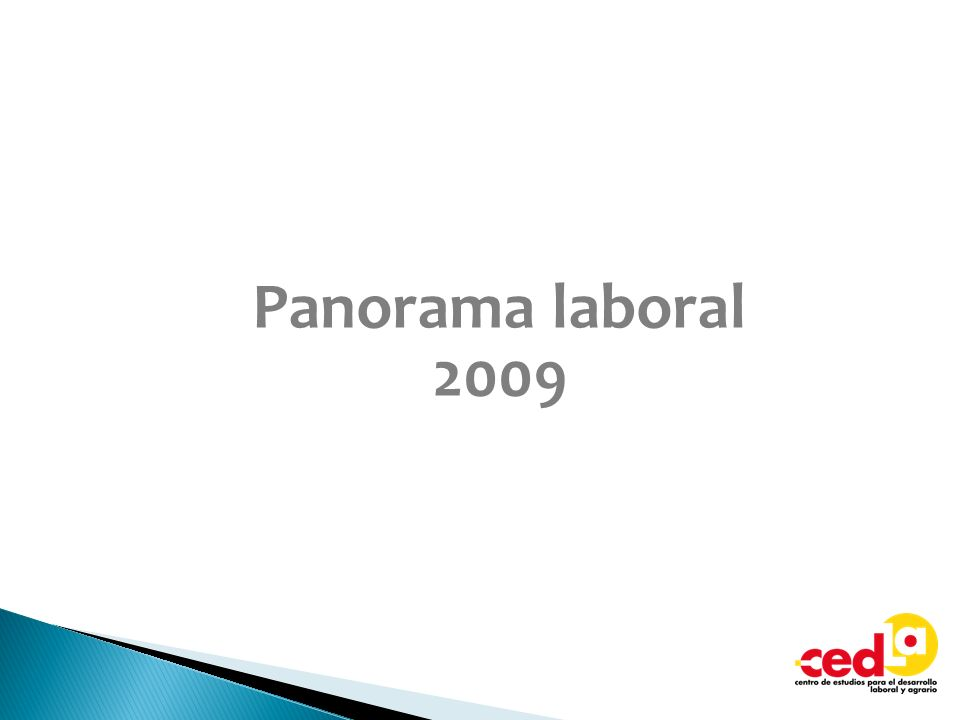 Panorama laboral 2009