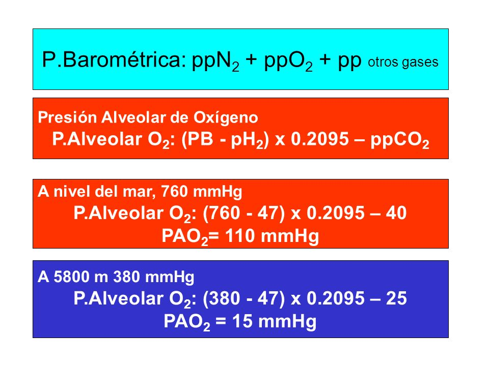 P.Barométrica: ppN 2 + ppO 2 + pp otros gases Presión Alveolar de Oxígeno P.Alveolar O 2 : (PB - pH 2 ) x 0.2095 – ppCO 2 A nivel del mar, 760 mmHg P.