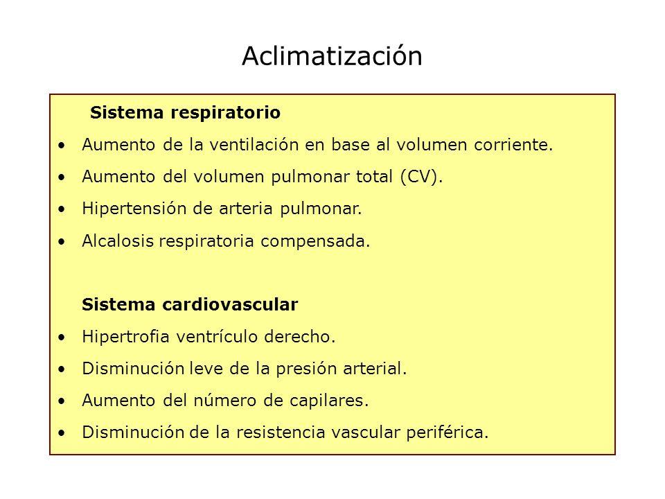 Sistema respiratorio Aumento de la ventilación en base al volumen corriente. Aumento del volumen pulmonar total (CV). Hipertensión de arteria pulmonar