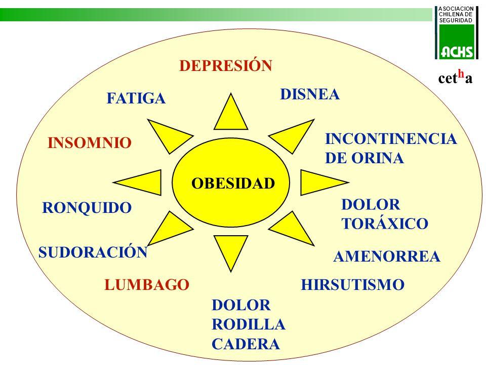 Mortalidad CV correguida por edad/1.000 hombres Colesterol total y mortalidad cardiovascular 361.662 hombres de 33 a 57 años 40 % de la Población Minera Colesterol total (mg/dl)