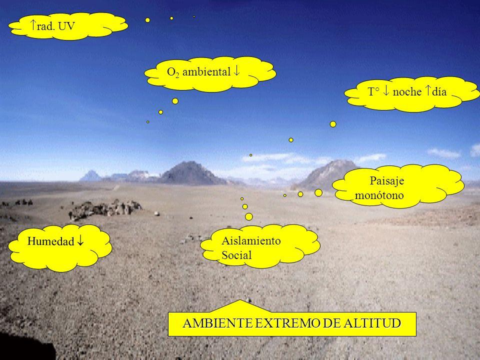 RELACIÓN HOMBRE - ALTITUD AGUDACLÁSICA No ARMÓNICA ·Chuquicamata ·Calama ·Potrerillos ARMÓNICA ·Isluga MINERÍA EN CHILE DEPORTISTAS ·montañistas ·ciclistas ·atletas ·científicos,etc INTERMITENTE ACHS