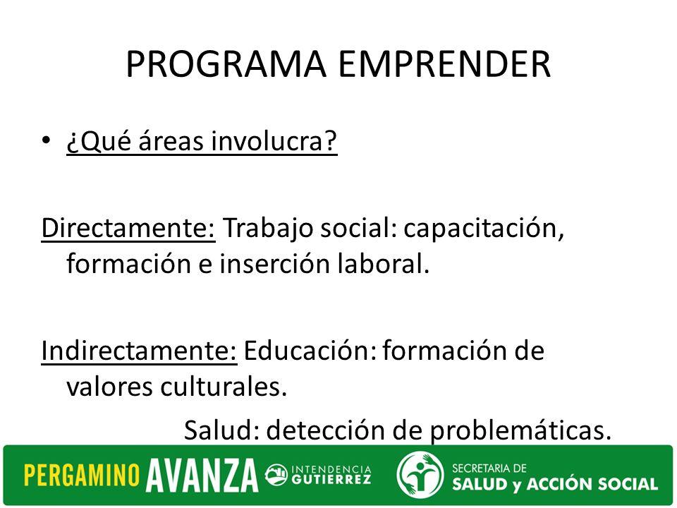 PROGRAMA EMPRENDER ¿Qué áreas involucra? Directamente: Trabajo social: capacitación, formación e inserción laboral. Indirectamente: Educación: formaci