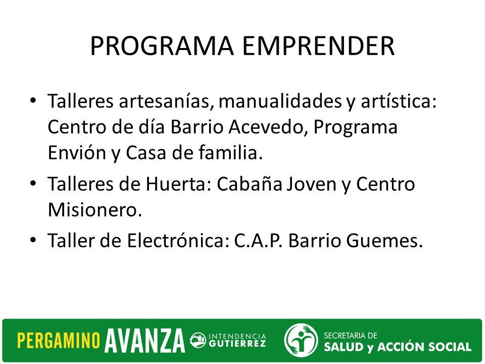 PROGRAMA EMPRENDER Talleres artesanías, manualidades y artística: Centro de día Barrio Acevedo, Programa Envión y Casa de familia. Talleres de Huerta: