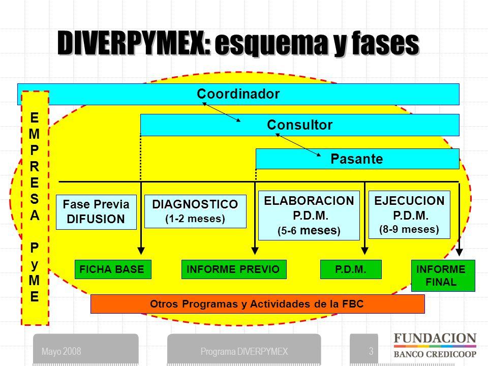 Mayo 2008Programa DIVERPYMEX3 DIVERPYMEX: esquema y fases Coordinador EMPRESAPyMEEMPRESAPyME Consultor Pasante DIAGNOSTICO (1-2 meses) ELABORACION P.D.M.