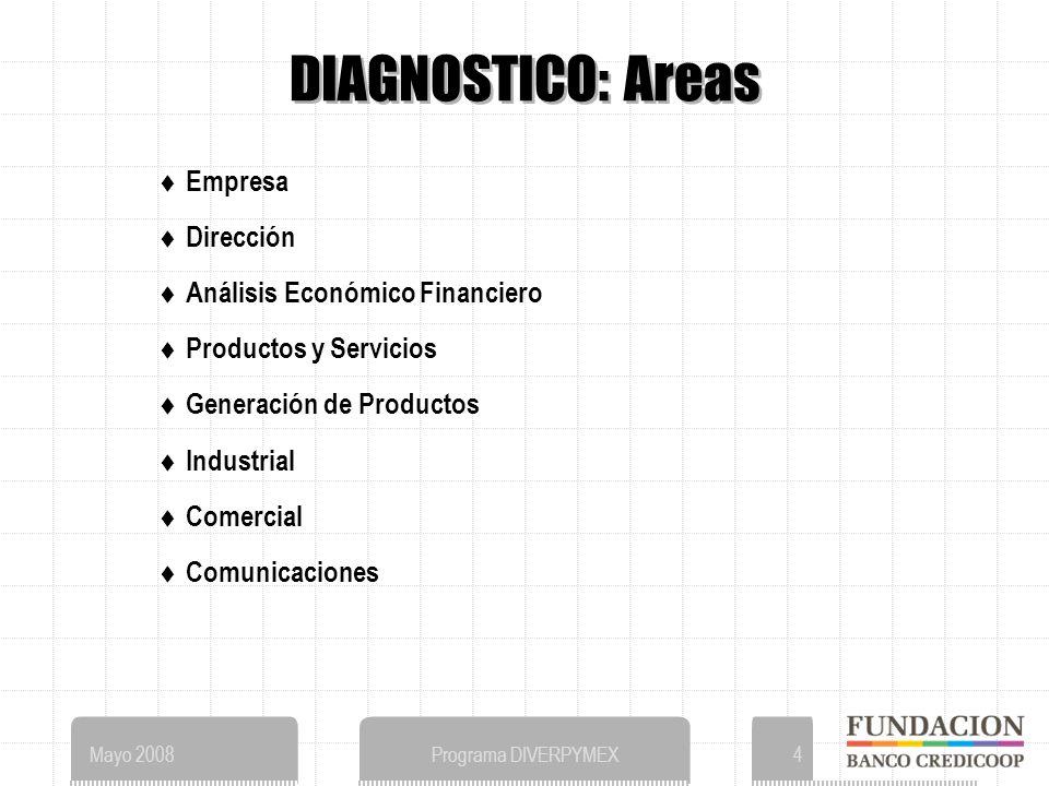 Mayo 2008Programa DIVERPYMEX4 DIAGNOSTICO: Areas Empresa Dirección Análisis Económico Financiero Productos y Servicios Generación de Productos Industrial Comercial Comunicaciones